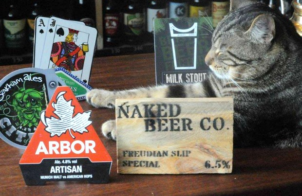 cat-pub-main